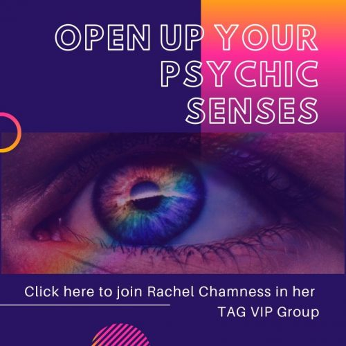 Rachel Chamness TAG VIP Group Ad